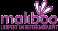 Maliboo : Agence SEO Experte en Positionnement 1ère Page Google